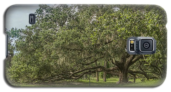 Galaxy S5 Case featuring the photograph Old Oak Tree by Jane Luxton
