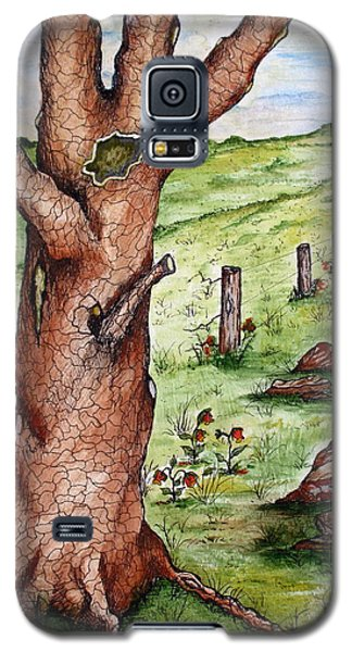 Old Oak Tree With Birds' Nest Galaxy S5 Case