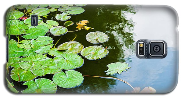 Old Pond - Featured 3 Galaxy S5 Case by Alexander Senin