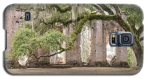 Old Sheldon Church - Bent Oak Galaxy S5 Case by Scott Hansen