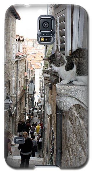 Old Town Alley Cat Galaxy S5 Case by David Nicholls