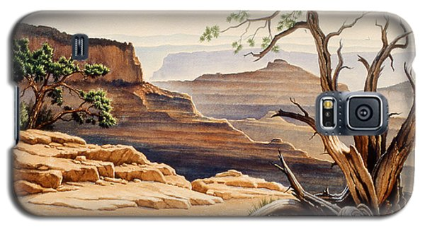 Grand Canyon Galaxy S5 Case - Old Tree At The Canyon by Paul Krapf