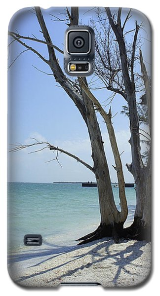 Galaxy S5 Case featuring the photograph Old Tree by Laurie Perry