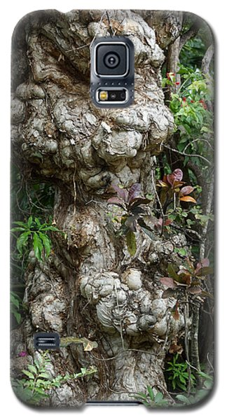 Galaxy S5 Case featuring the mixed media Old Tree by Rafael Salazar