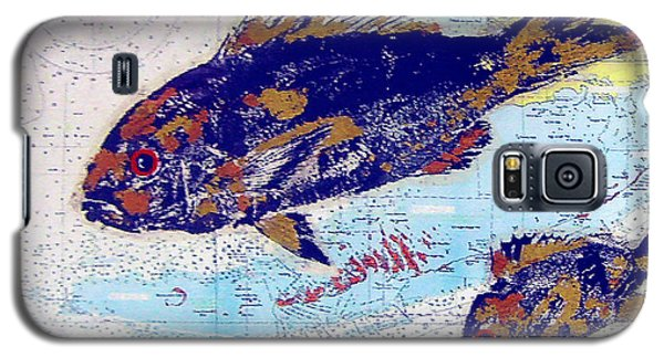Galaxy S5 Case featuring the photograph Old/vintage Over-painted Marine Chart by Merton Allen