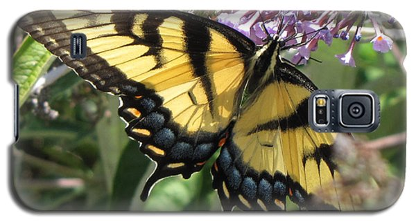 Galaxy S5 Case featuring the photograph Old World Swallowtail by Jennifer Wheatley Wolf