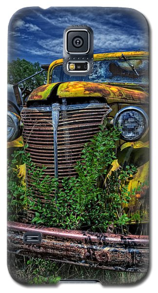 Galaxy S5 Case featuring the photograph Old Yeller by Ken Smith