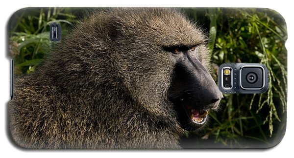 Olive Baboon   #0685 Galaxy S5 Case
