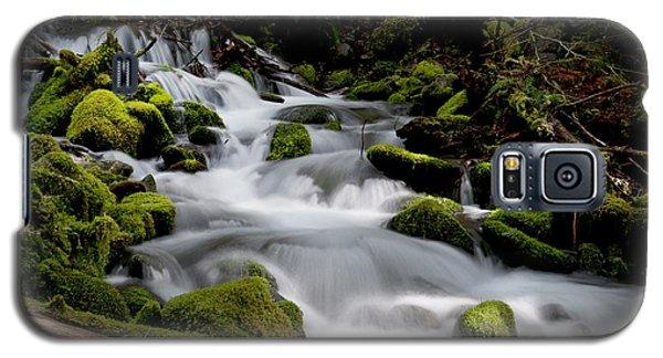 Olympic Spring Galaxy S5 Case by Art Shimamura