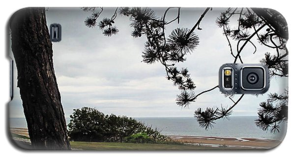 Omaha Beach Under Trees Galaxy S5 Case