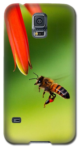 On Approach Galaxy S5 Case by Richard Stephen