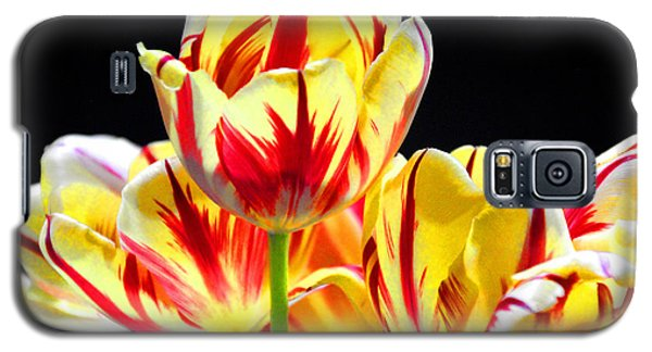 Galaxy S5 Case featuring the photograph On Fire by Brian Davis