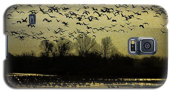 On Golden Pond Galaxy S5 Case by Elizabeth Winter