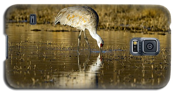 On Golden Pond Galaxy S5 Case