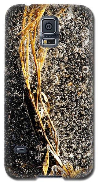On Ice Galaxy S5 Case