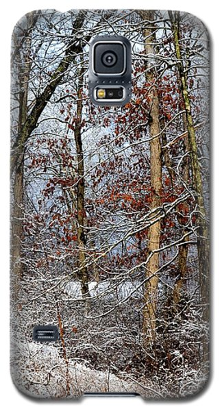 On Such A Winter's Day Galaxy S5 Case