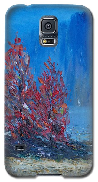 The Woodlands Of Lough Hyne Galaxy S5 Case