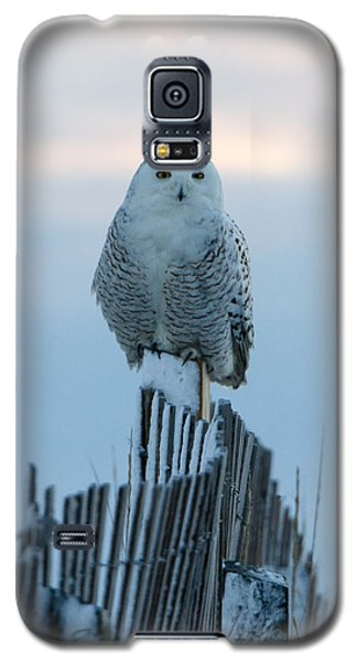 On The Fence Galaxy S5 Case by Stephen Flint