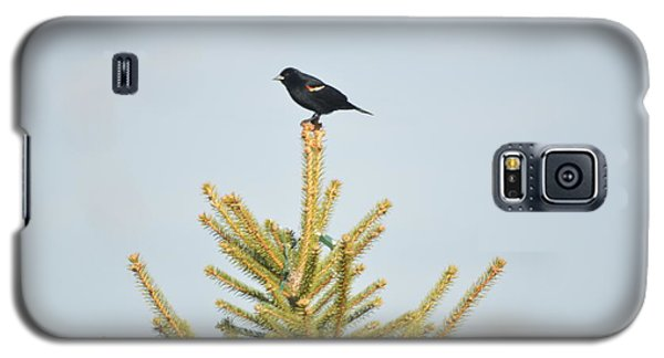 On The Lookout Galaxy S5 Case by Dacia Doroff