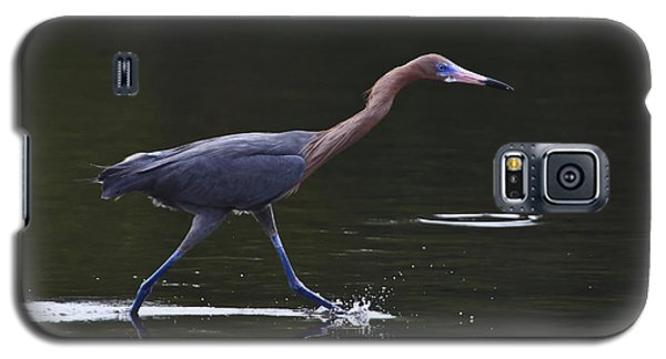 On The Run Galaxy S5 Case by Gary Hall