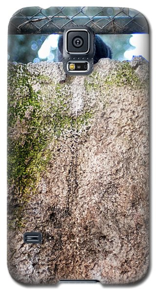 Galaxy S5 Case featuring the photograph On The Wall by Laura Melis