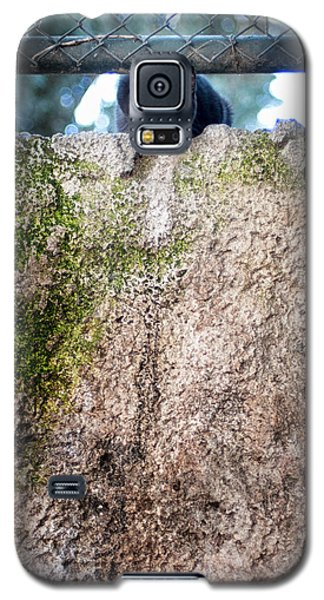 On The Wall Galaxy S5 Case by Laura Melis