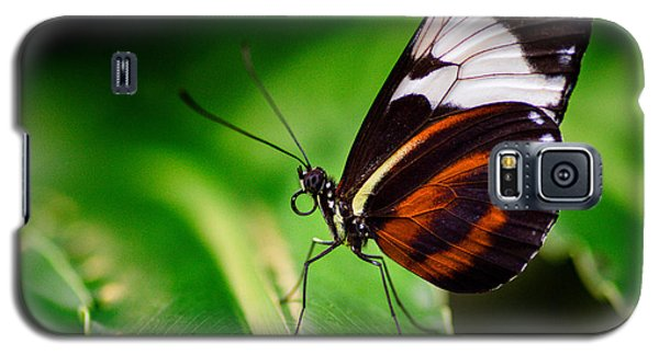 On The Wings Of Beauty Galaxy S5 Case