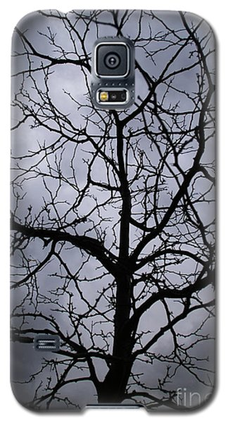Galaxy S5 Case featuring the photograph On Their Shoulders Held The Sky by Linda Shafer