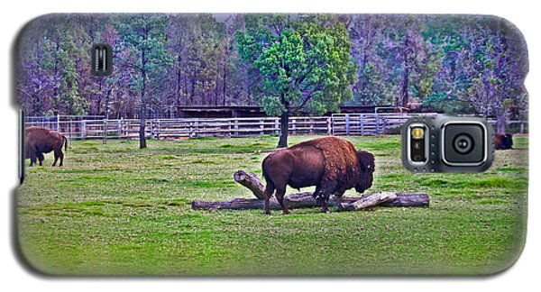 One Bison Family Galaxy S5 Case