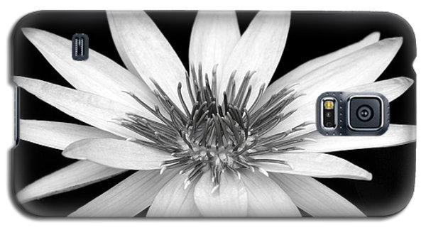 One Black And White Water Lily Galaxy S5 Case