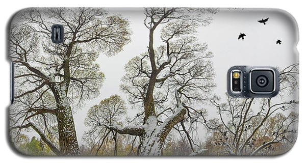 One Cold October Day Galaxy S5 Case by Vladimir Kholostykh