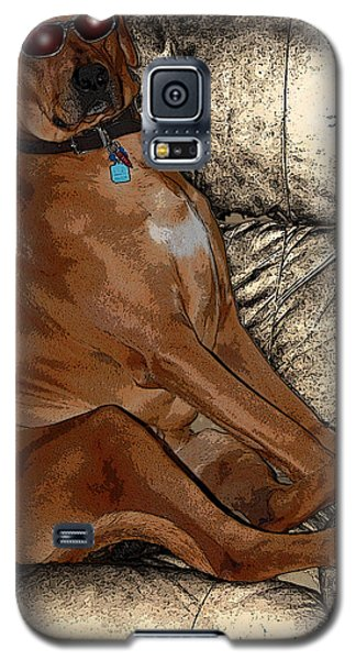 One Cool Dog Galaxy S5 Case by Mim White