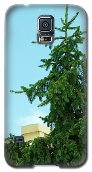 Galaxy S5 Case featuring the photograph One Cool Evergreen by Lena Wilhite