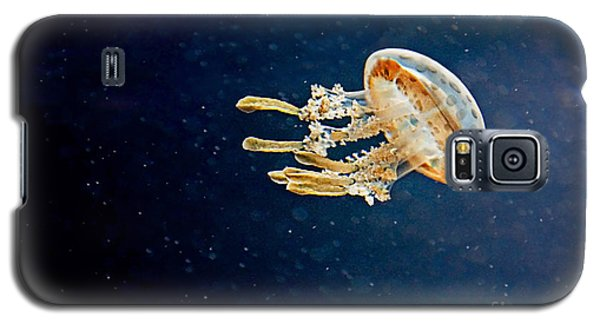 One Jelly Fish Art Prints Galaxy S5 Case