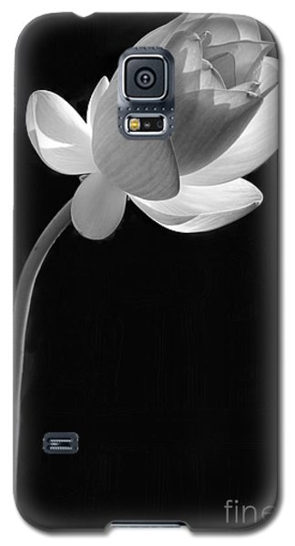 One Lotus Bud Galaxy S5 Case