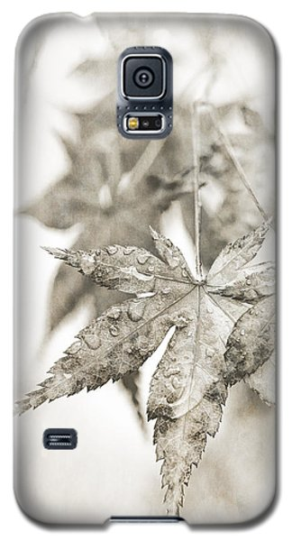 One Misty Moisty Morning Galaxy S5 Case by Caitlyn  Grasso