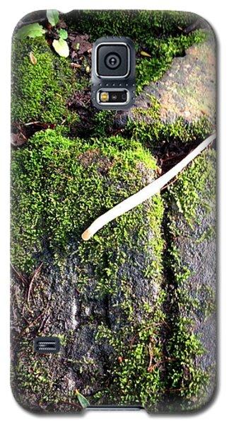 One Pistil Galaxy S5 Case