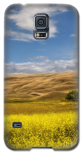 Galaxy S5 Case featuring the photograph One by Sandi Mikuse
