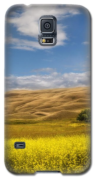 One Galaxy S5 Case by Sandi Mikuse