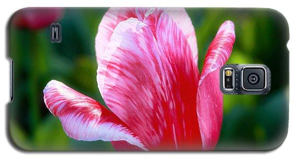 One Singular Sensation Galaxy S5 Case