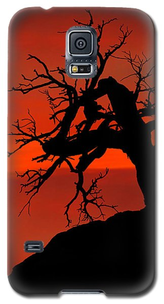 One Tree Hill Silhouette Galaxy S5 Case