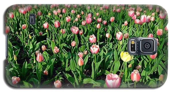 One Yellow Tulip Galaxy S5 Case