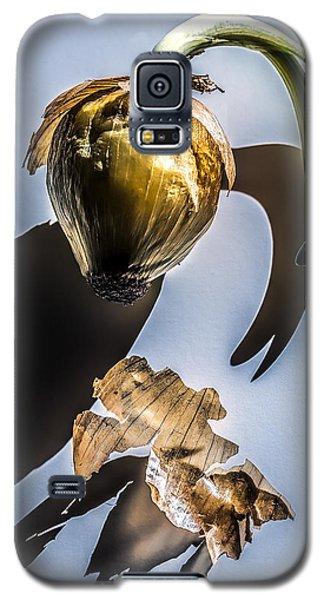 Onion Skin And Shadow Galaxy S5 Case by Bob Orsillo