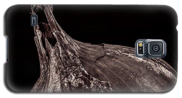 Onion Skin Galaxy S5 Case by Bob Orsillo