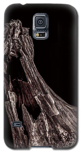 Onion Skin Two Galaxy S5 Case by Bob Orsillo