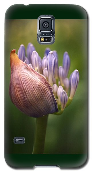 Only The Beginning Galaxy S5 Case