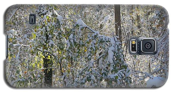 Onset Of Winter 2 Galaxy S5 Case by Rudi Prott