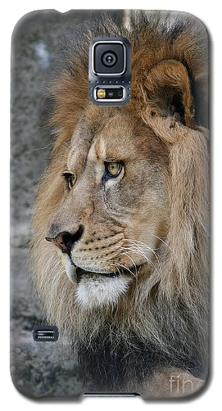 Galaxy S5 Case featuring the photograph Onyo #11 by Judy Whitton