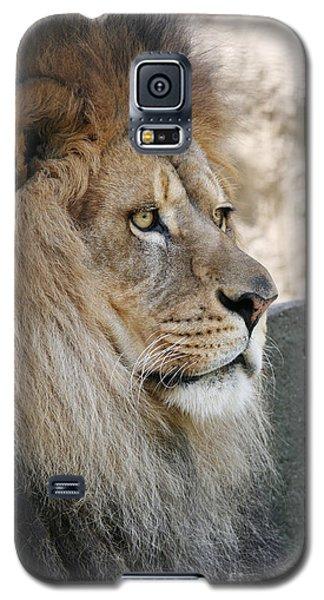 Onyo #8 Galaxy S5 Case by Judy Whitton