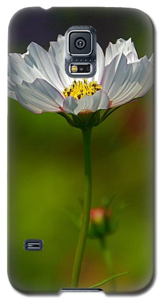 Galaxy S5 Case featuring the photograph Open For All by Byron Varvarigos